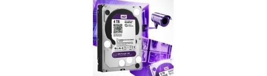 HDD / SD